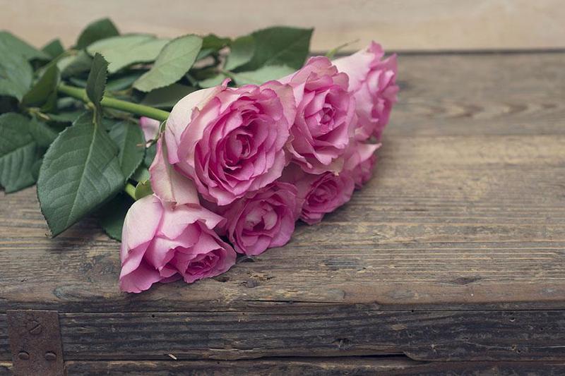 Mê mẩn với những loài hoa đẹp khi trang trí tiệc sinh nhật tại nhà
